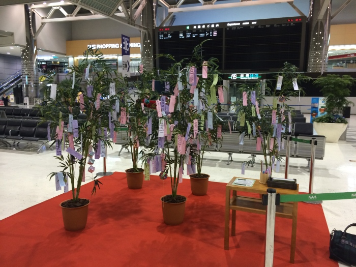"During the Tanabata Summer Festival, the Japanese write their wishes on strips of paper and hang them on ""wish trees"" like these."